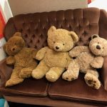 3 Bears Reading Area